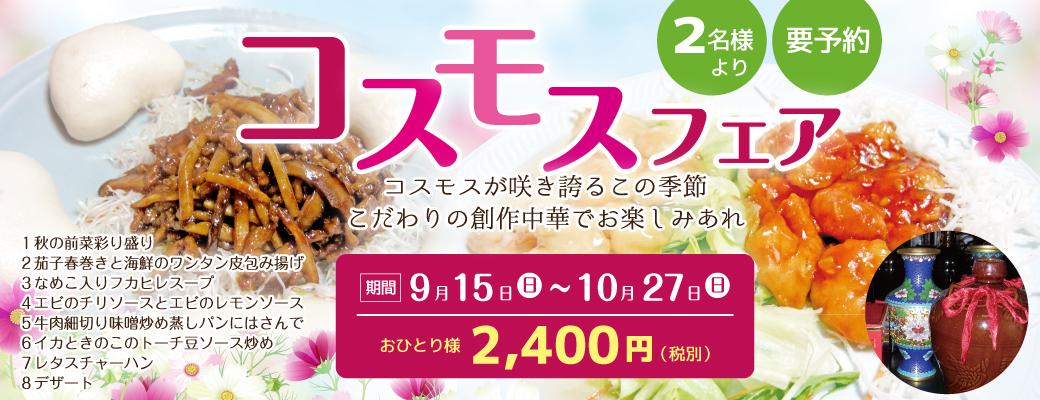 コスモスフェア2,400円(税別)